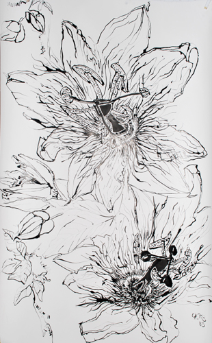 Passion Flower Line Drawing : Christian peltenburg brechneff passion fruit flower drawings